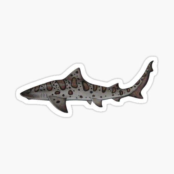 Tiny Leopard Shark Sticker