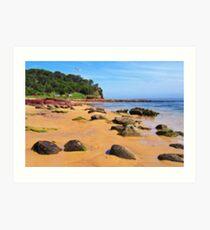 Bar Beach - Merimbula Art Print