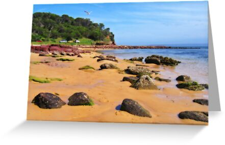 Bar Beach - Merimbula by Darren Stones