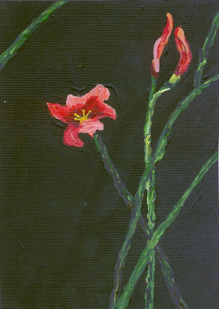 Orange Flower by azcactusd