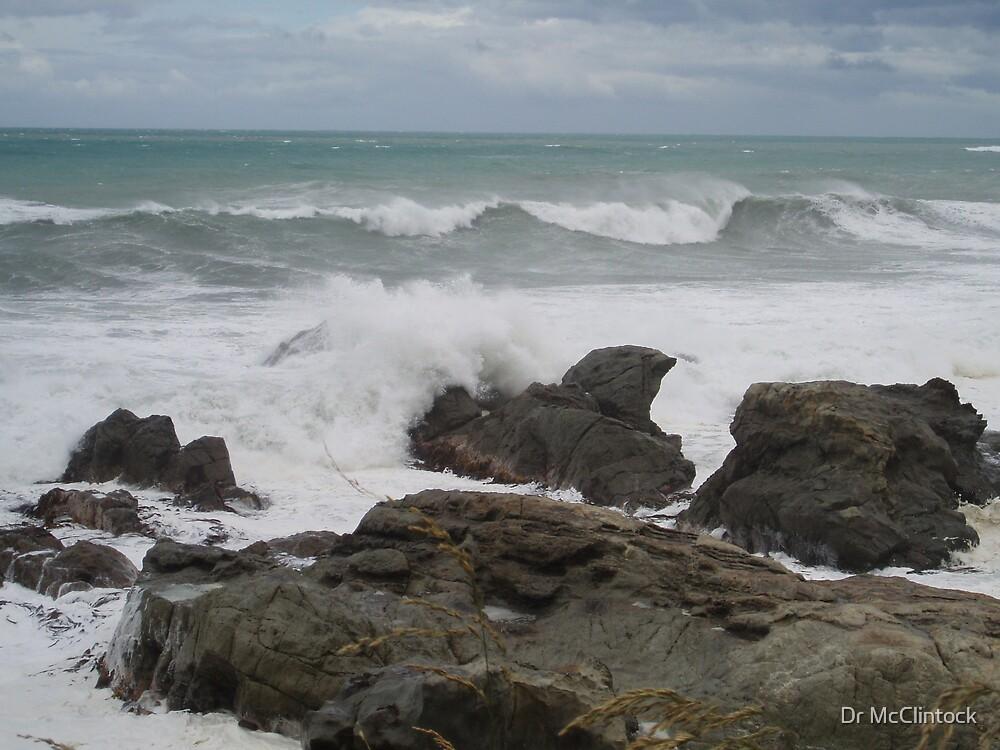 West Coast Shoreline NZ by Dr McClintock