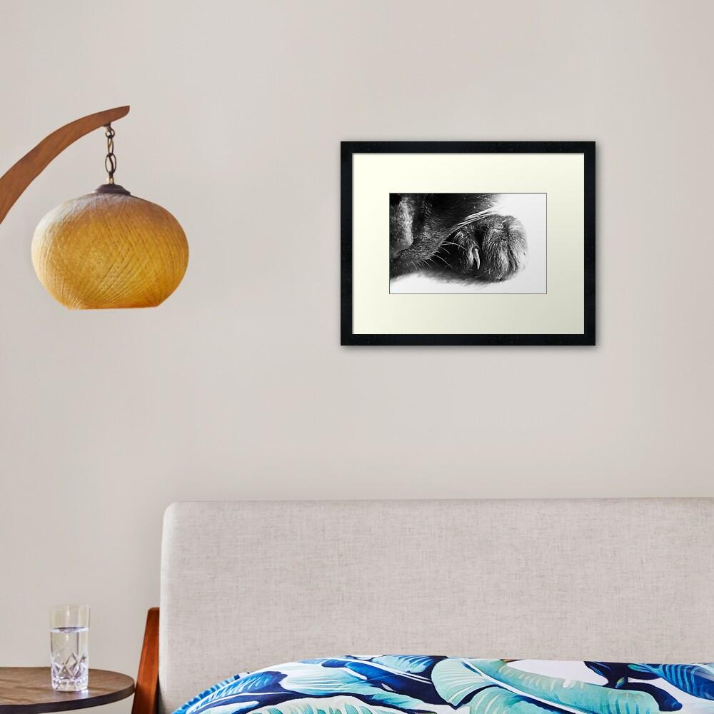 Paw Framed Art Print