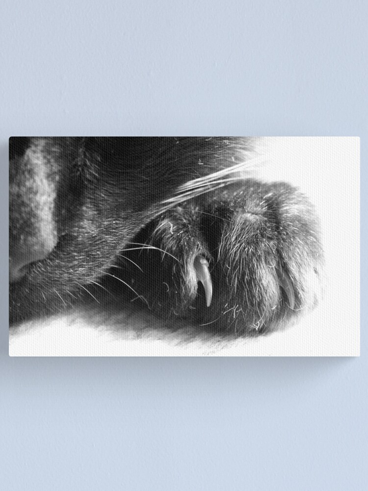 Alternate view of Paw Canvas Print