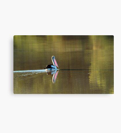 Drifting Along, Diamantina River,Qld Canvas Print