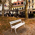 Ljubljana Bench by Rae Tucker