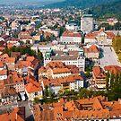 City View of Ljubljana by Rae Tucker