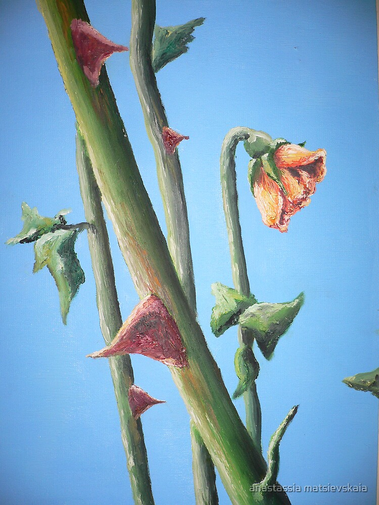 rose by anastassia matsievskaia
