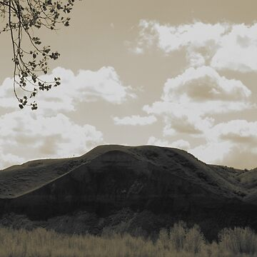 Memory Lane by Quigi