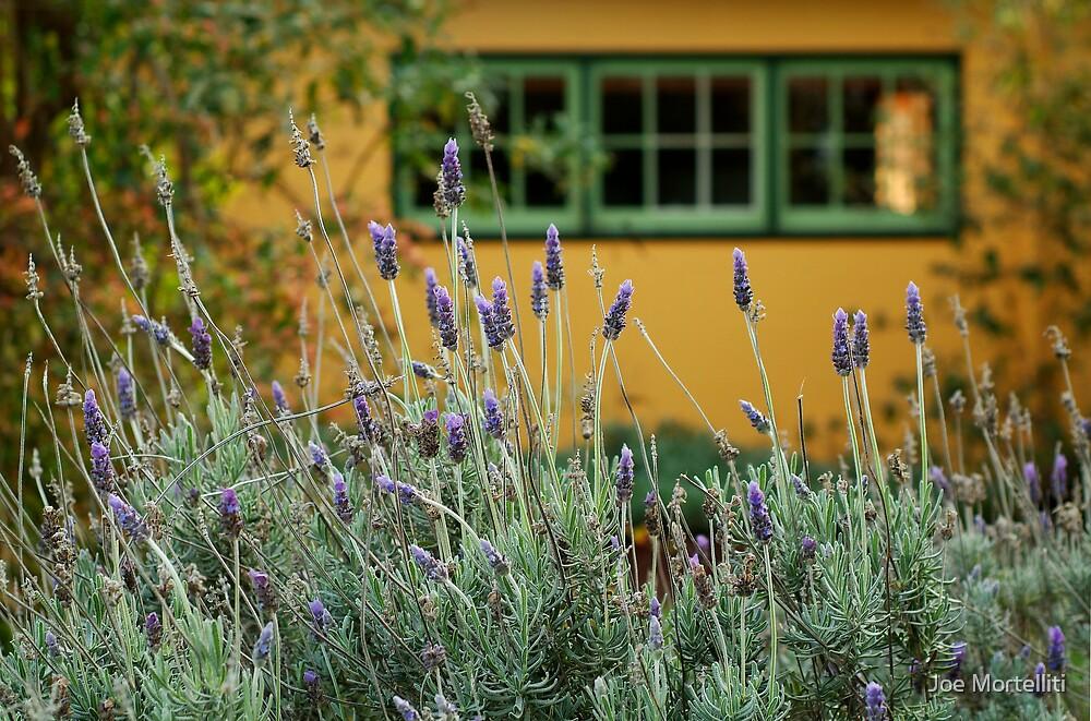 Lavender Cottage by Joe Mortelliti