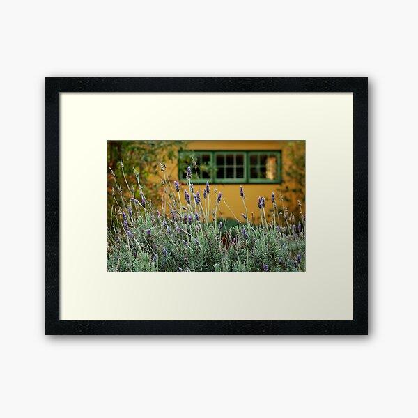 Lavender Cottage Framed Art Print