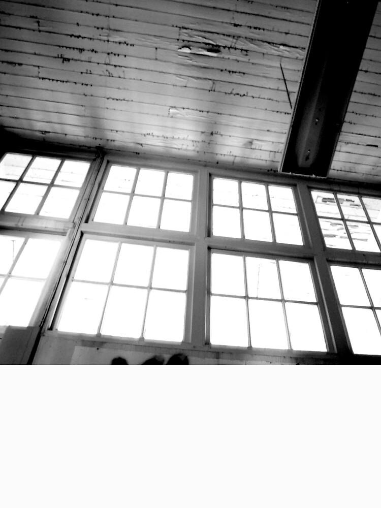 Window by dkcazaly