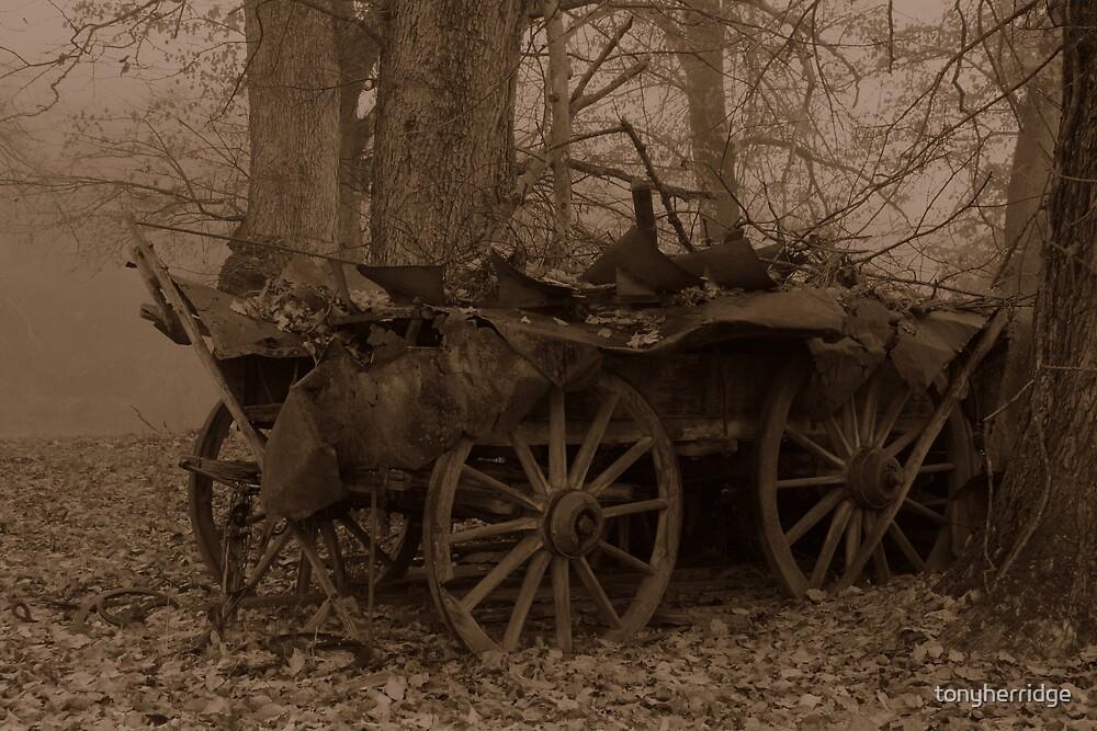 Wagon 2 by tonyherridge
