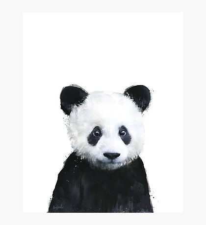 Little Panda Photographic Print