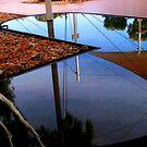 Reflection by Robyn Lakeman