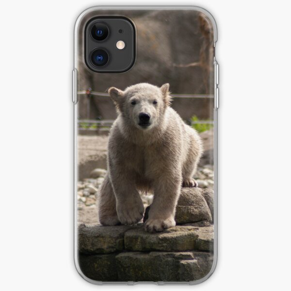 Baby polar bear iPhone Soft Case