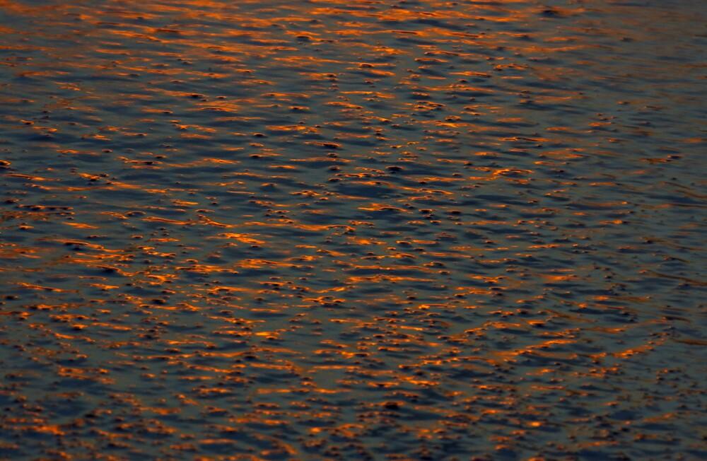 Sunset reflections by Elana Halvorson