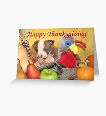 Thanksgiving (prints & cards w/words - all other items w/no words) Greeting Card
