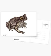 Toad Postcards