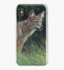 Eastern Coyote iPhone Case