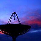 Exploring the skies by Allyeska