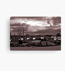 Back of Bunnings Canvas Print