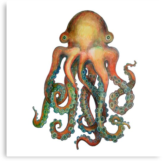 Octopus or Squid? It's a Cephalopod! by dotsofpaint