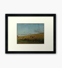 Cattle on a thousand hills Framed Print