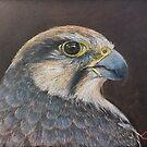 Lanner Falcon by Leanne Inwood