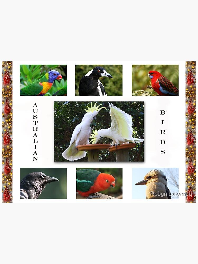 Birds in my garden by Rivergirl