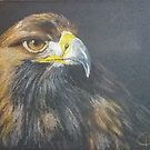 Golden Eagle by Leanne Inwood