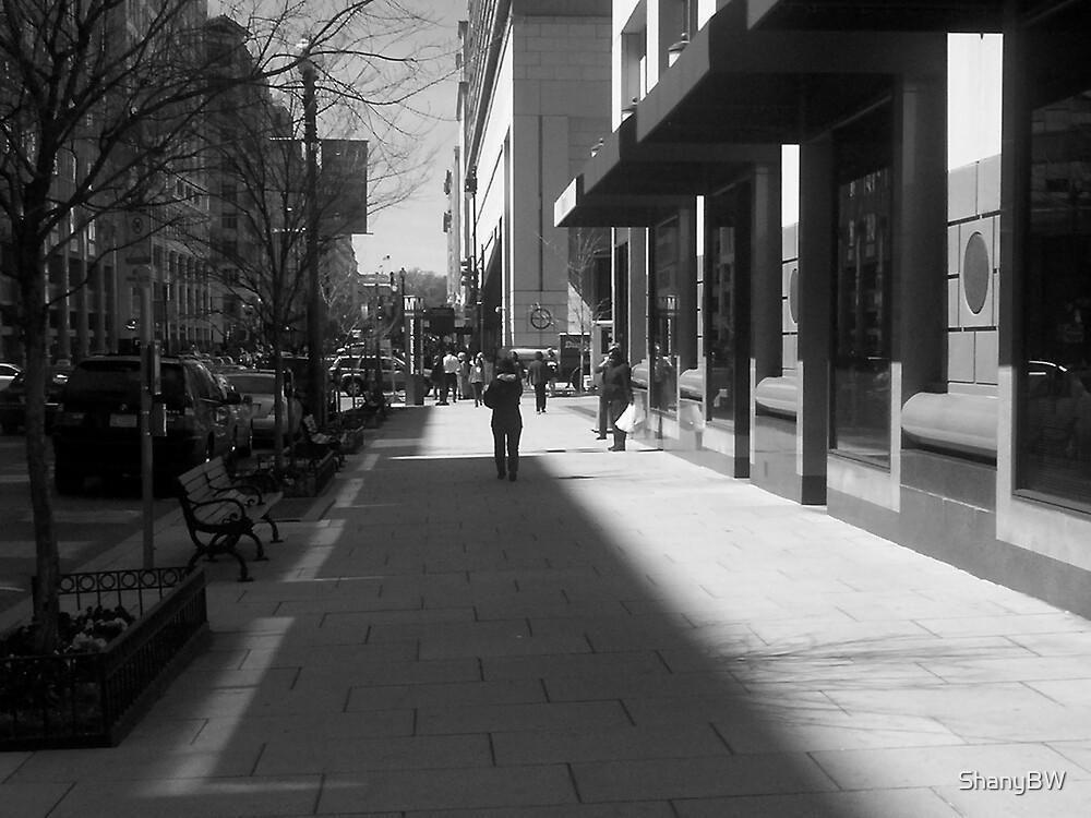"""The Long Walk"" by ShanyBW"