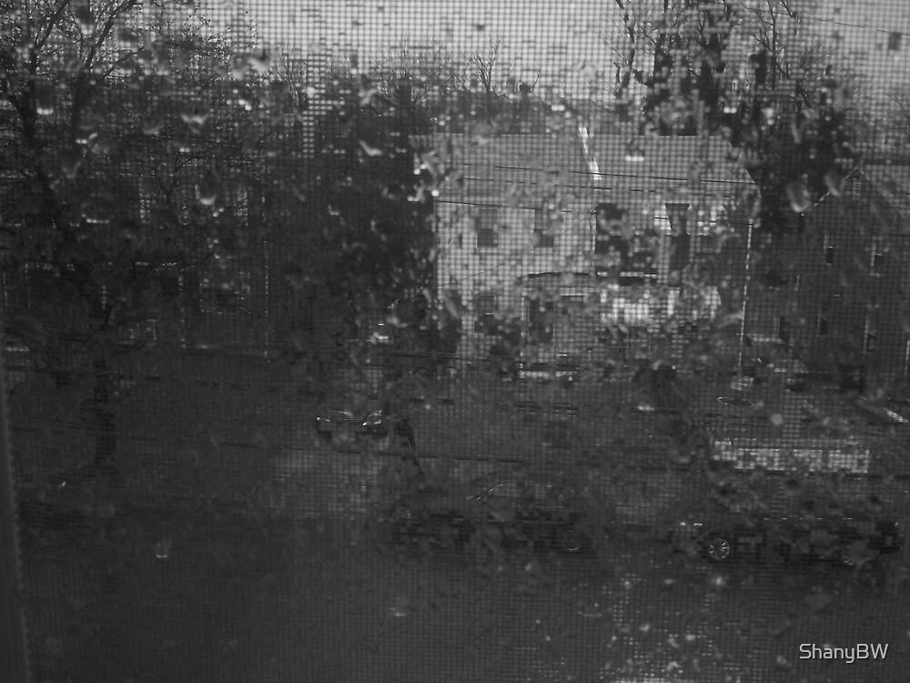 """""""When It Rainz It Pours"""" by ShanyBW"""