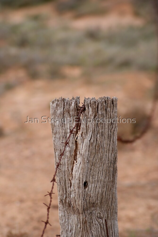 fencing by Jan Stead JEMproductions