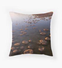 Thrombolites of Lake Clifton Throw Pillow