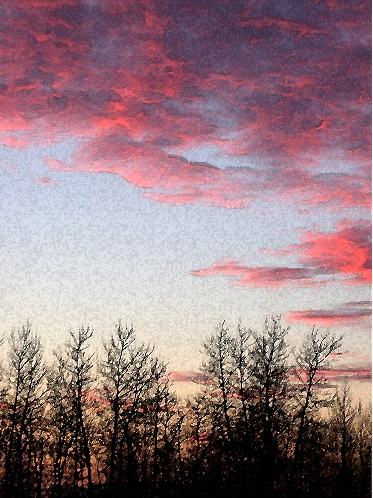 Wasilla Sky by SunnyDay