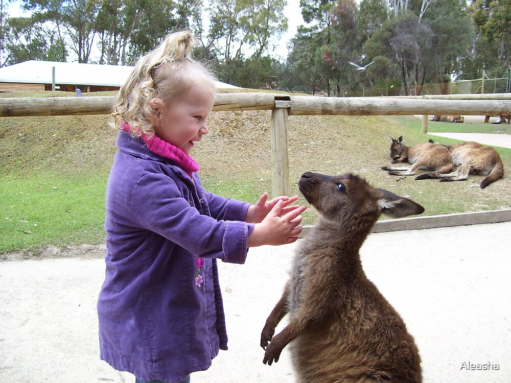 my sister and the boxing kangaroo by Aleasha