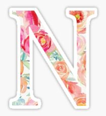 N/Nu Sticker