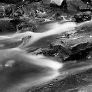 McKensie Falls by Andre Gascoigne