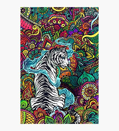 The White Tiger Photographic Print