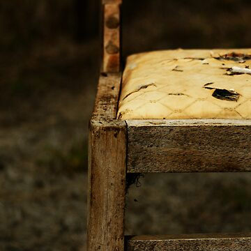 Chair in Sepia  by stephentrepreneur