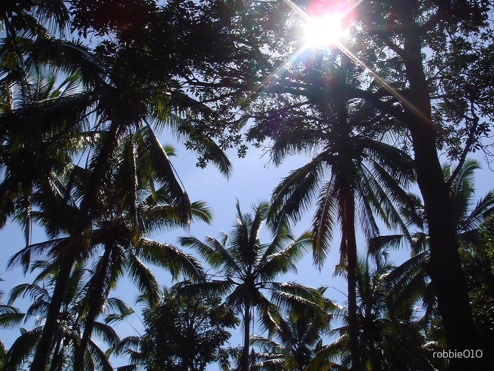 Bali Palm by robbie010
