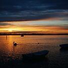 Swan Bay Sunset, Queenscliff by Joe Mortelliti