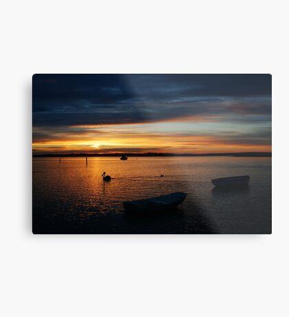 Swan Bay Sunset, Queenscliff Metal Print