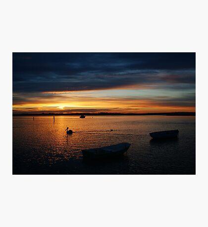 Swan Bay Sunset, Queenscliff Photographic Print