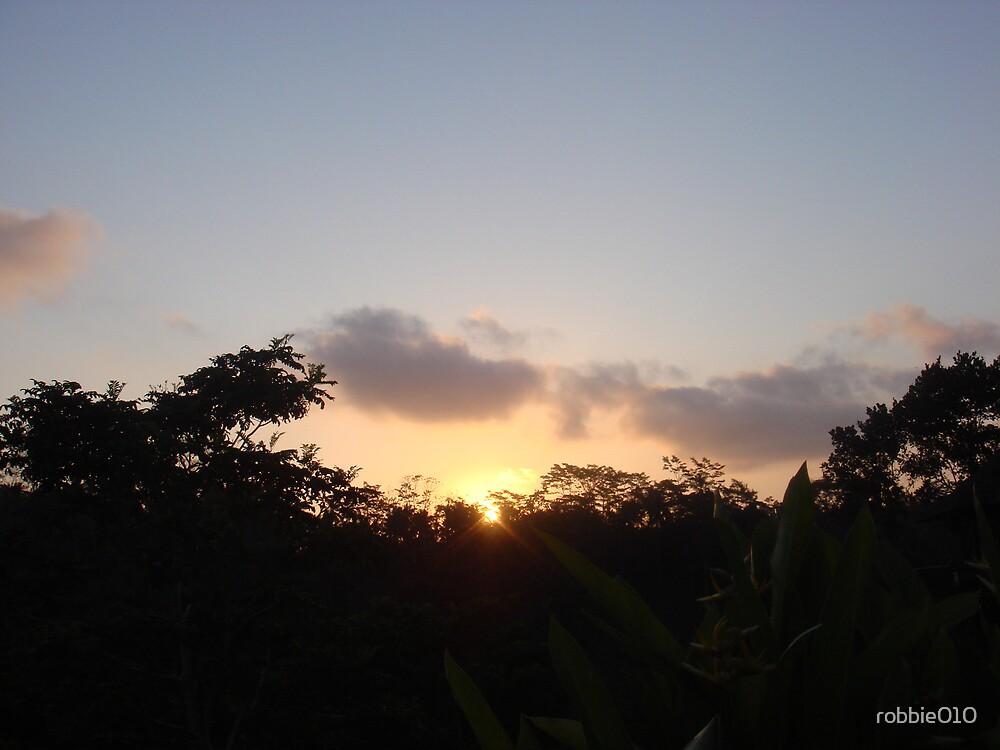 Bali Sunset VIII by robbie010