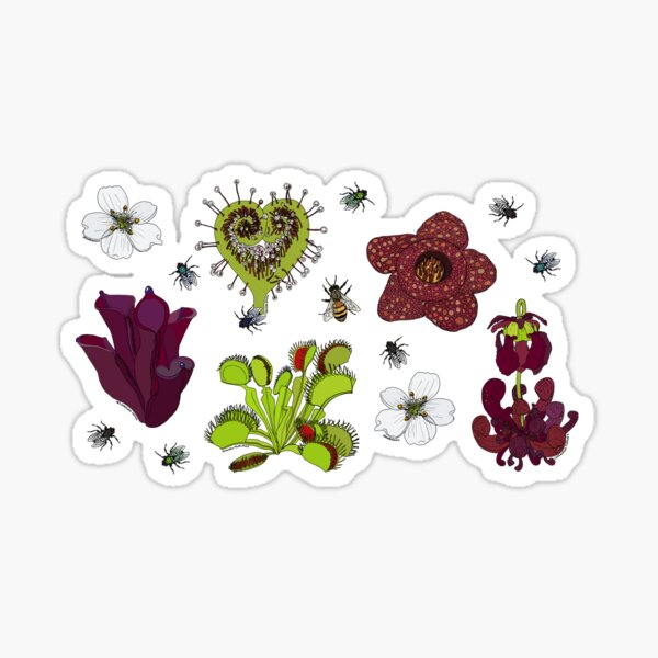 Insectivorous plants - scattered Sticker