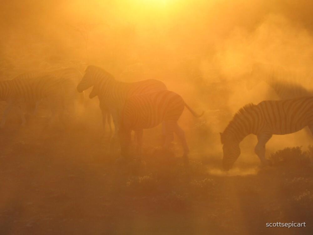 Zebras @ Dawn by scottsepicart