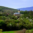 Spring in Croatia by annalisa bianchetti