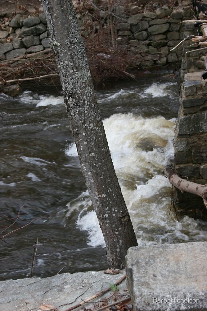 19th Mill Waterfall by BarbsNicholson