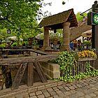 Historic Beer-garden/Biergarten am Hexenhäusle, Nuremberg  by Priscilla Turner